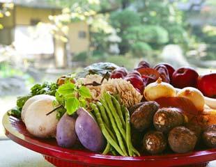 食糧廃棄物減への取り組み