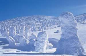 山形の樹氷
