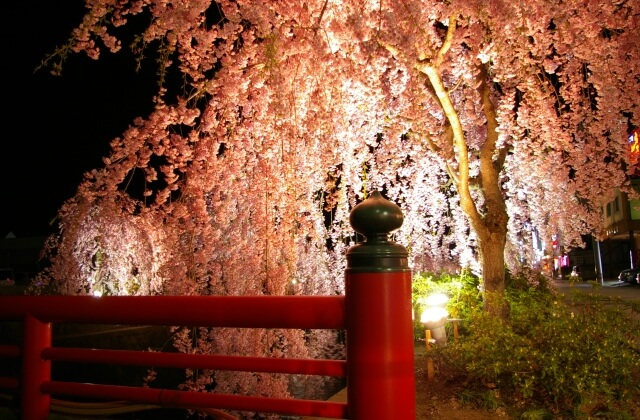 ≪春~Spring~限定≫山形の春を五感で感じる『春』厳選素材の特別和会席
