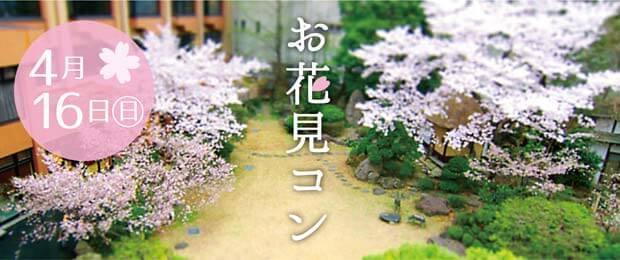 婚活イベント「お花見コン」たくさんのご応募ありがとうございます!