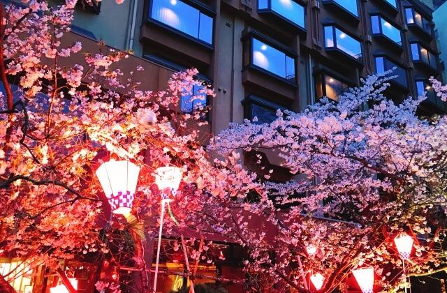 夜桜ぼんぼりライトアップ