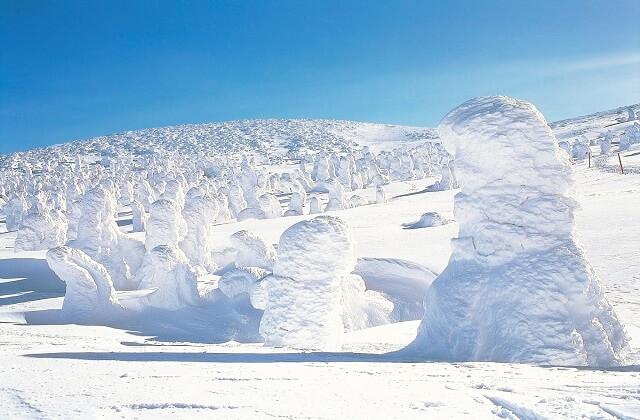 【天童から蔵王樹氷へ!】滝の湯に泊まって蔵王の樹氷を楽しむハーフデイトリッププラン♪